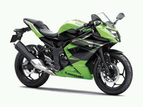 ninja-250-rr-mono.jpg