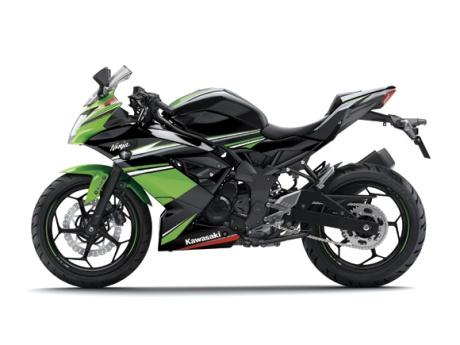 ninja 250rr mono