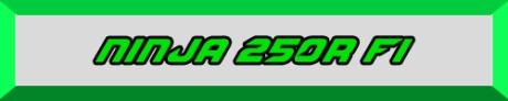 NINJA 250R FI