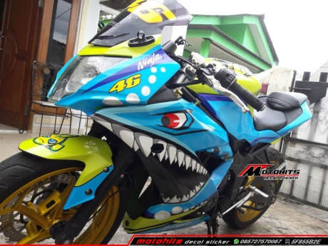 decal sticker Ninja 250 rr mono